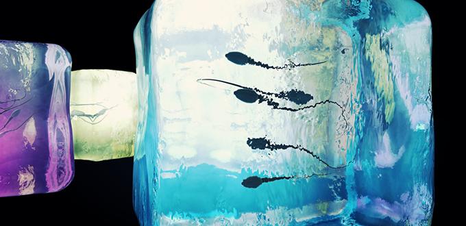 صورة تجميد السائل المنوي لحين الحاجة إليه لاحقاً