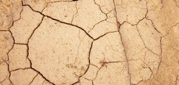 صورة آثار تلوث التربة