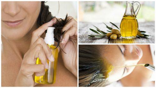 صورة استخدامات زيت الزيتون – 6 فوائد لاستخدام زيت الزيتون على الشعر