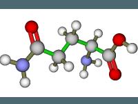 صورة الأحماض الأمينية