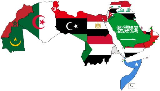 صورة قارن بين التركيب النوعي والتركيب العمري للسكان في الوطن العربي