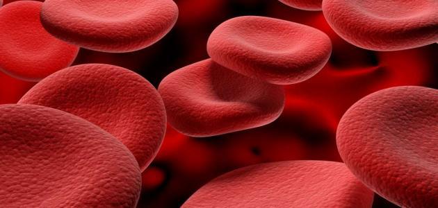 صورة طرق علاج فقر الدم