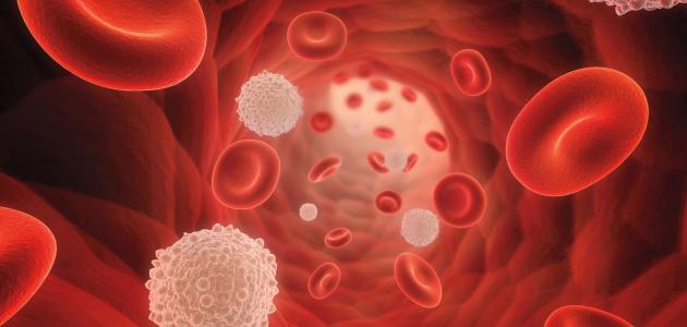 صورة علاج نقص الصفائح الدموية