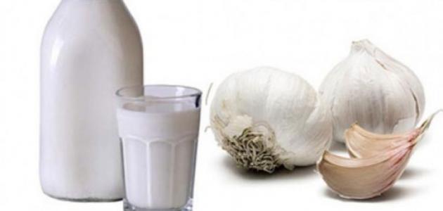 صورة فوائد الثوم مع اللبن