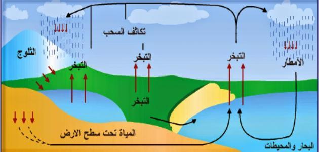 صورة ماذا يطلق على عملية تحول المادة الصلبة إلى سائلة