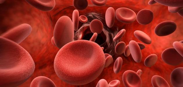 صورة معلومات عن تميع الدم