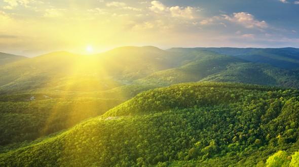 صورة حساسية الشمس