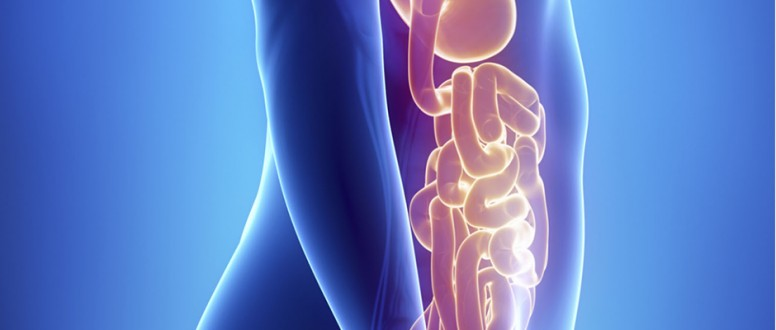 صورة دواء جديد لمصابي متلازمة الأمعاء القصيرة