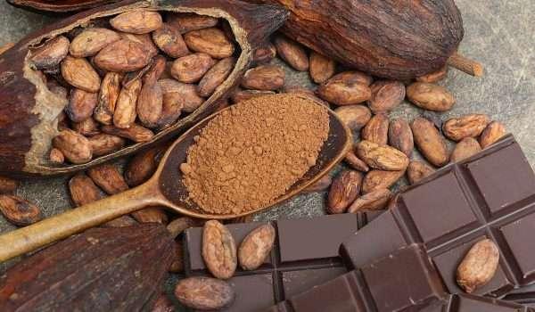 صورة فوائد الكاكاو … و ما هي أسراره المذهلة ؟