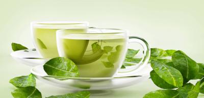 صورة الشاي الاخضر لزيادة القدرة الجنسية