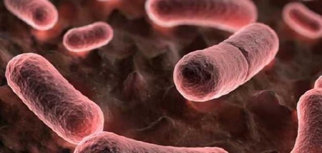 صورة أعراض مرض الطاعون
