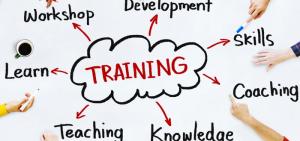 صورة أنواع التدريب المهني