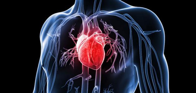 صورة أعراض مرض القلب