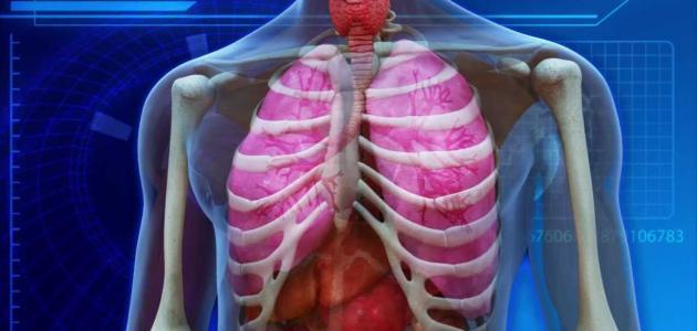 صورة أمراض الجهاز التنفسي الأكثر انتشاراً