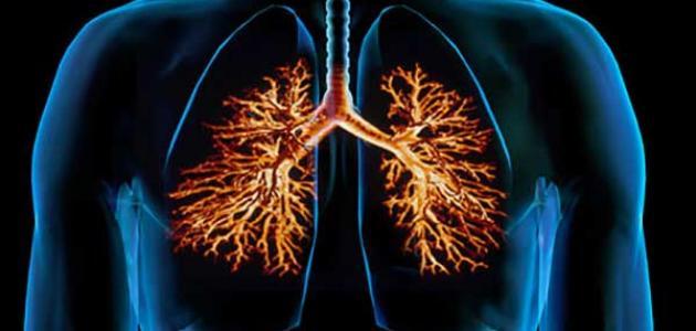 صورة أهمية مطعوم الإنفلونزا