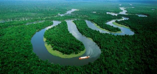 صورة أين يصب نهر الأمازون