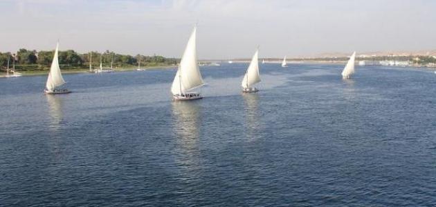 صورة بحث حول نهر النيل