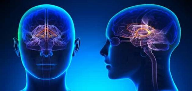 صورة علاج الكهرباء الزائدة في المخ