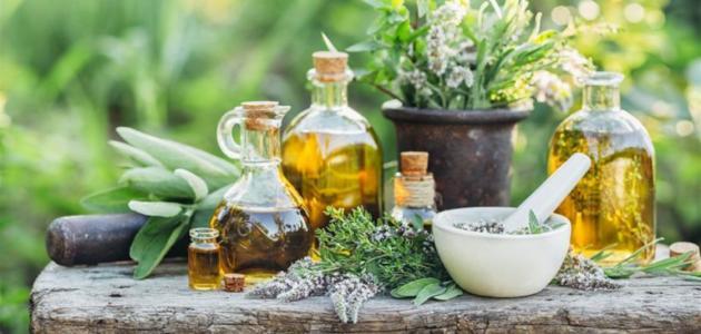 صورة هل يوجد علاج لتقرحات الأنف بالأعشاب؟ وما رأي العلم؟