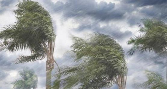 صورة الرياح تقتلع 3 اعمدة كهرباء في الديسة