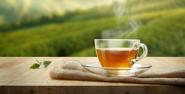 صورة الشاي الاخضر: فوائد طبية وعلاجية وتجميلية لا حصر لها