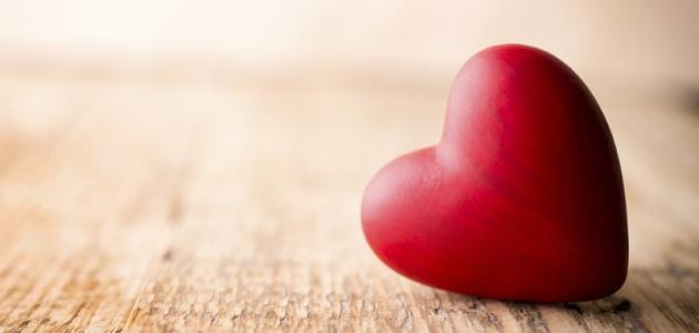 صورة ما معنى كلمة حب