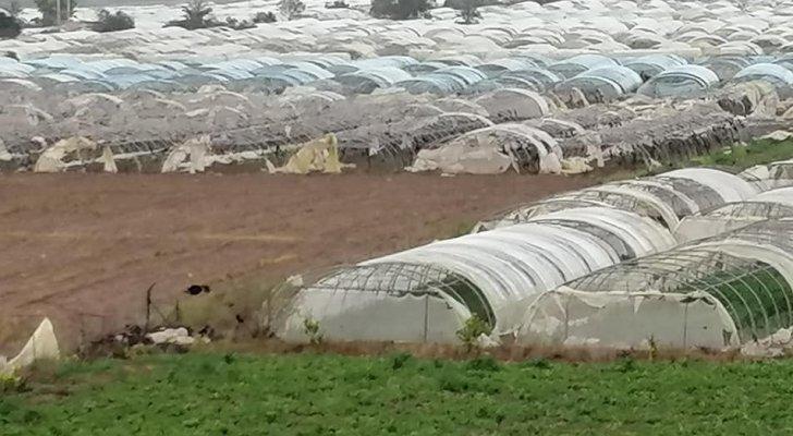 صورة قروض دون فوائد لمزارعين متضررين