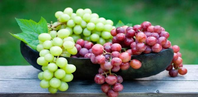 صورة العنب يحمي من متلازمة التمثيل الغذائي